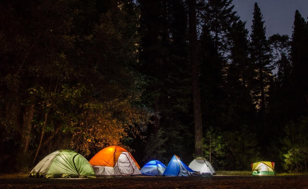 What You Should Know Before Going Camping