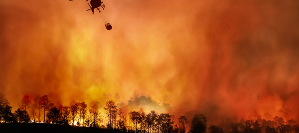Wildfires are a threat