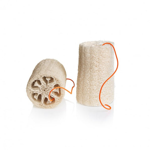Loofah Sponge (2pcs.): Natural/White