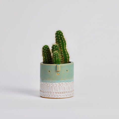 Atelier Stella Mini Succulent Pot: Matt Green/Shiny White