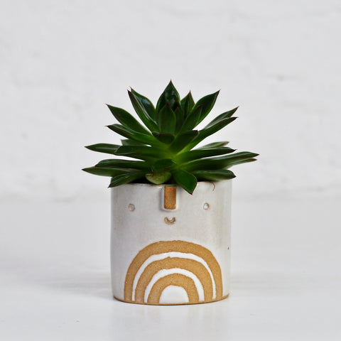 Atelier Stella Mini Succulent Pot: Shiny White Rainbow