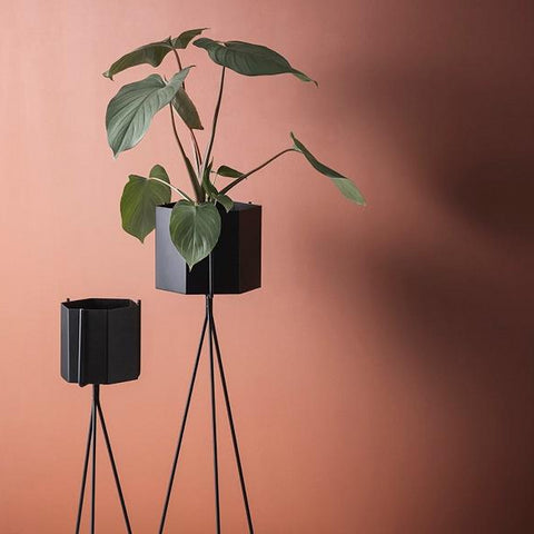 Plant Pots & Vases Hexagon Pot Large: Black - The Union Project