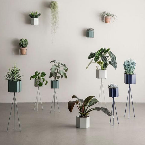 Plant Stand Low: Light Grey