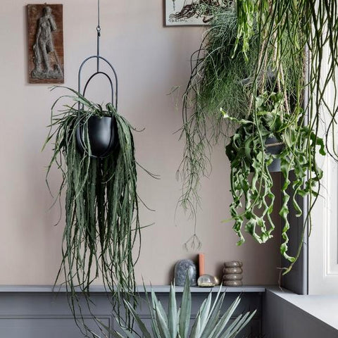 Hanging Deco Pot: Black