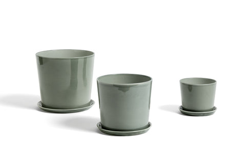 Plant Pots & Vases Botanical Family Saucer L: Dusty Green - The Union Project
