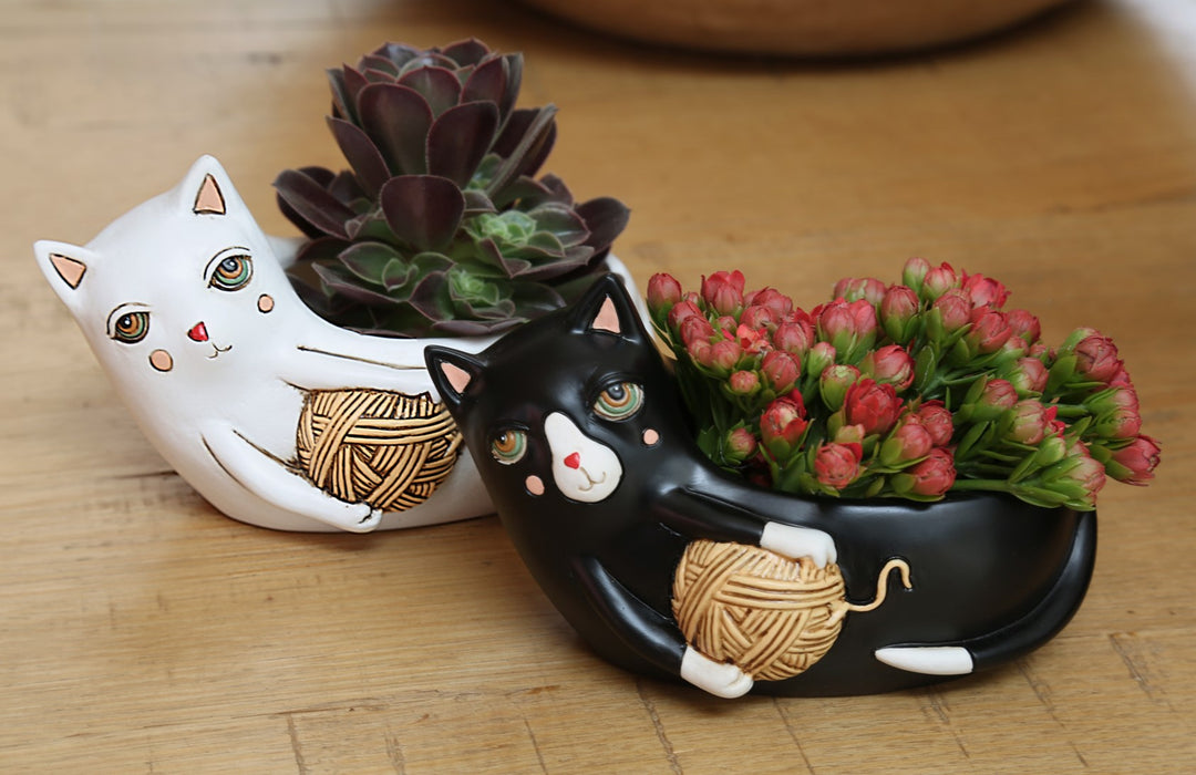 White Cat with Yarn Planter - Baby
