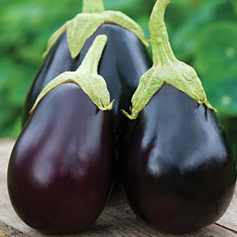 Brinjal / Eggplant - Big Purple / Bhartha (per 250 g)