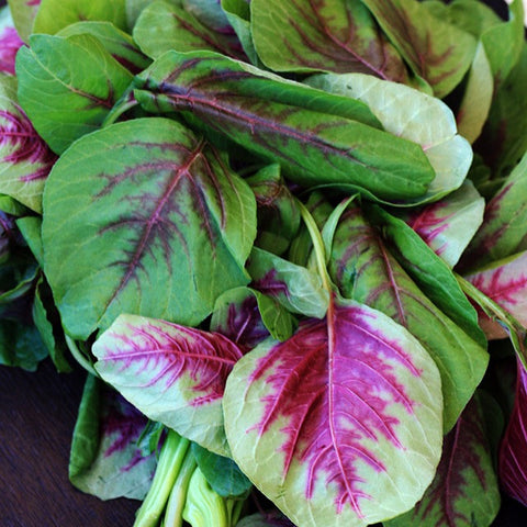 Leaves - Amaranth Red (per 250 g)