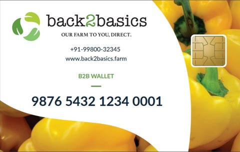 back2basics Cash Card (per Rs. 500 recharge)