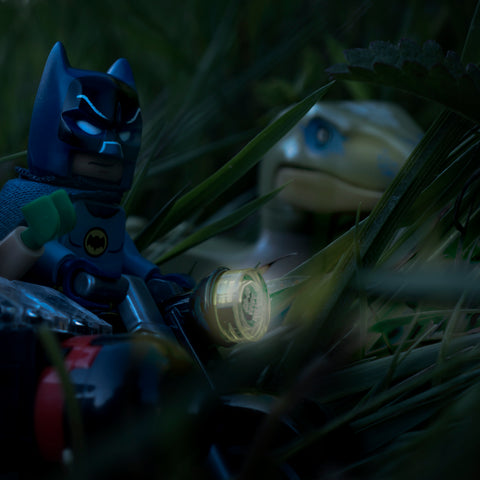 Welcome to Jurassic World old chum. Holy genetic manipulation Batman. Lego photography by Tom Milton