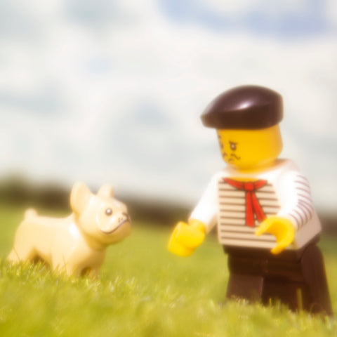 Merde. Lego photography by Tom Milton