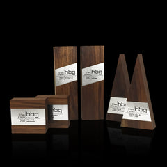 Contemporary Team Employee Recognition Award Trophies