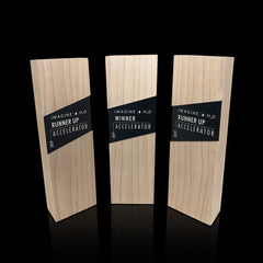 Elegant Corporate Recognition Trophies for Non-profit Imagine H2O