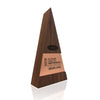 Modern Corporate Recognition Trophy Awards for Carrier