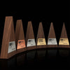 unique engraved executive awards for employee recognition