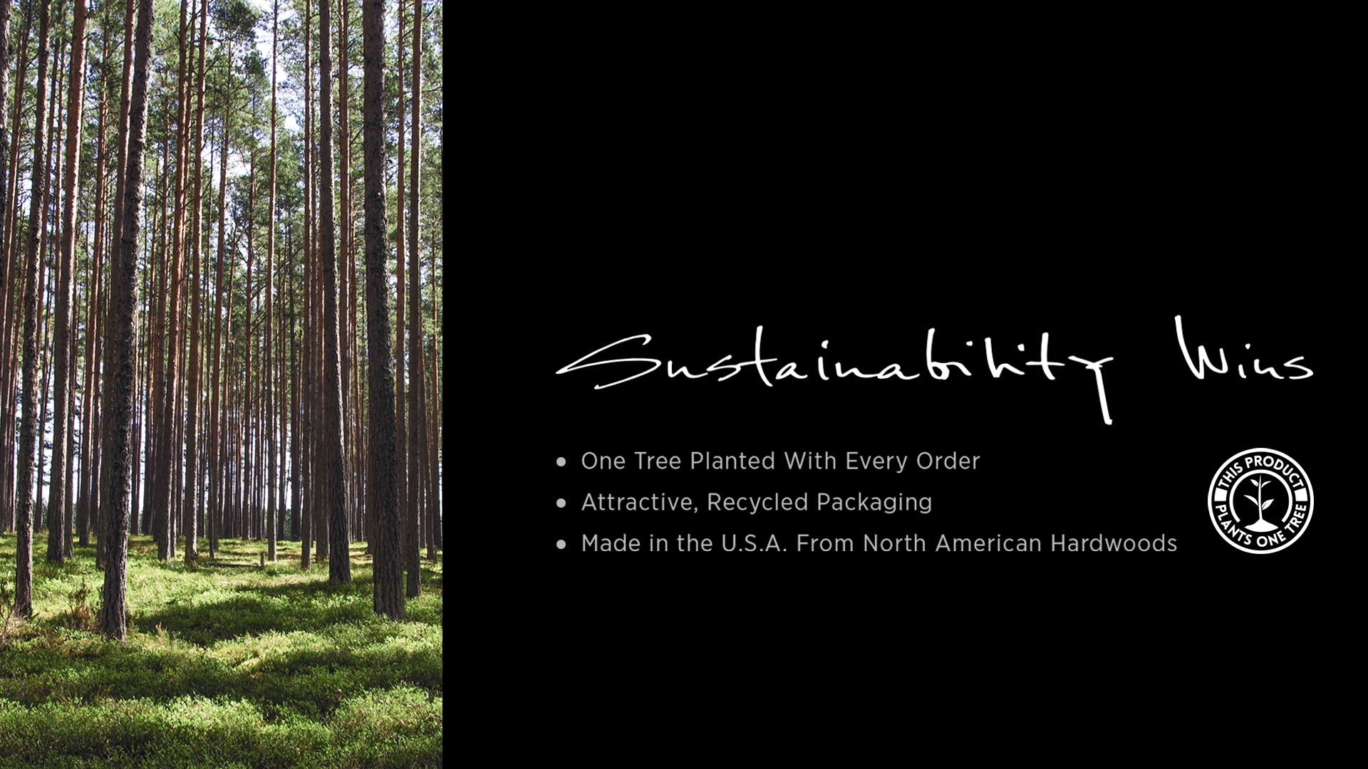 Custom Awards Sustainable packaging USA