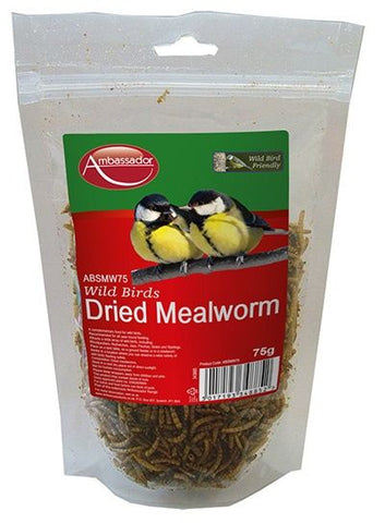 Ambassador Mealworms - 75g - Flying Dutchman Stores