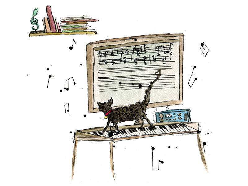 Kitty Composer