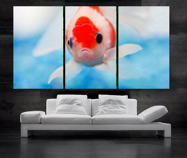 "LARGE 30""x 60"" 3 Panels Art Canvas Print beautiful  Fish Aquarium Wall decorative home interior (Included framed 1.5"" depth) - BoxColors"