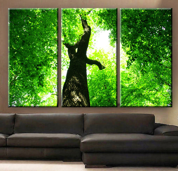 "Huge 3 Panels framed 1.5"" depth Art Canvas Print beautiful Tree Forest green leaves under the sun Wall home office decor interior - BoxColors"