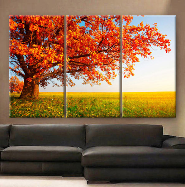 "Huge 3 Panels framed 1.5"" depth Art Canvas Print beautiful Red tree leaves autumn in prairie Wall home office decor interior - BoxColors"