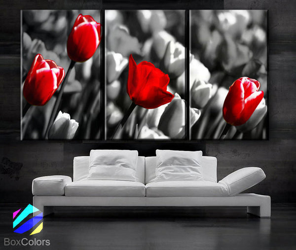 "LARGE 30""x 60"" 3 Panels Art Canvas Print  Red Rose background Black white Floral Flower love Wall Home decor (Included framed 1.5"" depth) - BoxColors"