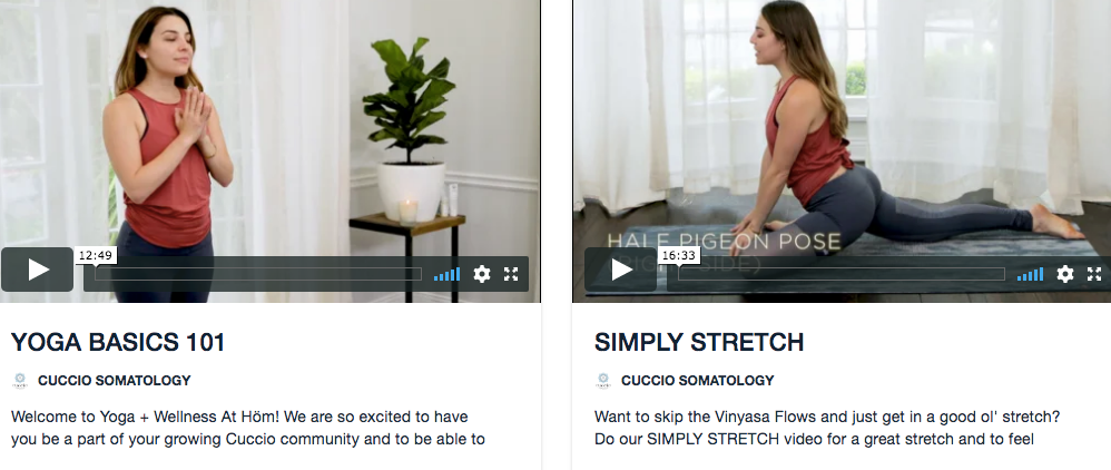 YOGA + WELLNESS AT HÖME: ONLINE WELLNESS VIDEO SERIES! VIDEO ONLY*