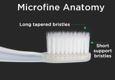 Microfine Anatomy