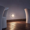 Mini Button Wall/Ceiling Lamp by Flos