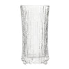 Ultima Thule Champagne Glass Set of 2 by Iittala