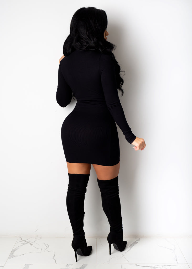 Want The Whole Thing Mini Dress