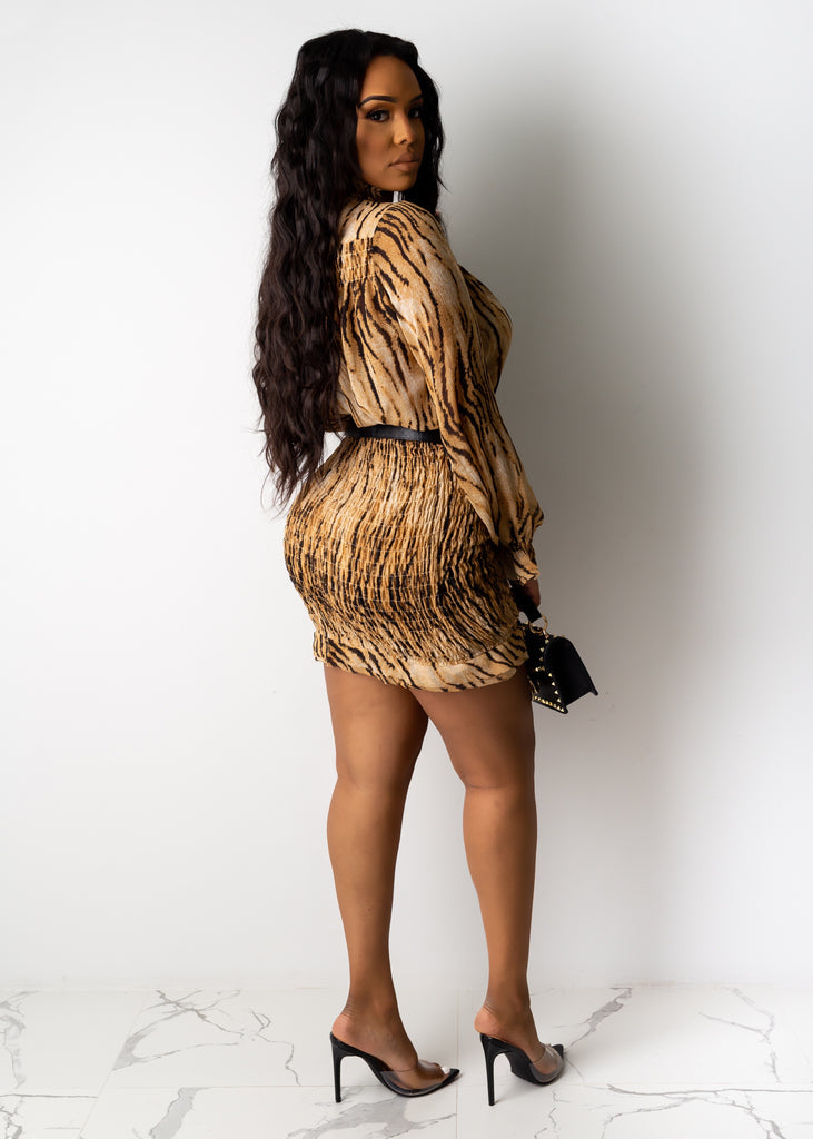 Natural Attraction Mini Dress