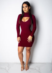 Open Front Turtle Neck Mini Dress