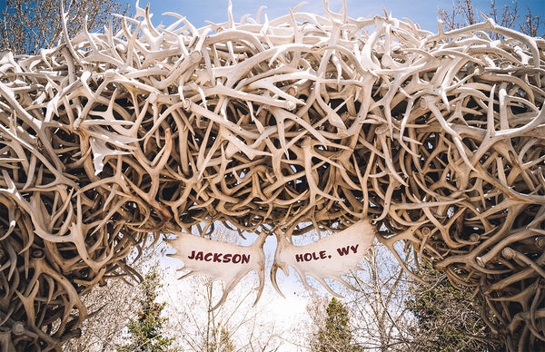 Antler Arch in Jackson Hole
