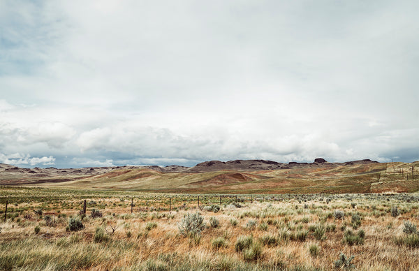 Fields in Jordan Valley, Oregon