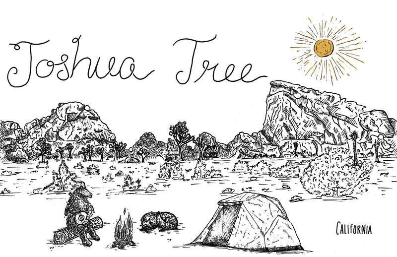 JOSHUA TREE - Illustration