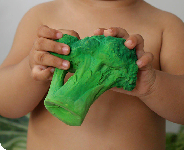 Brucy Broccoli Chewable Toy by Oli & Carol