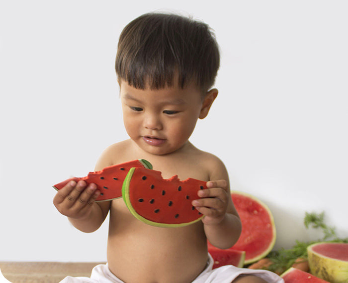 Wally Watermelon Chewable Toy by Oli & Carol