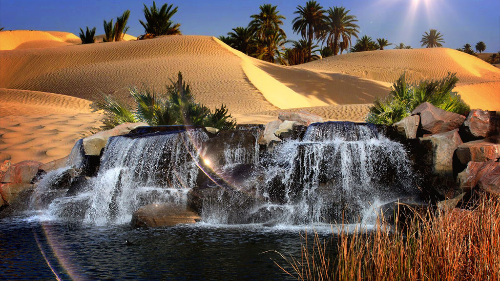 Desert Oasis Nature Sounds Mp3 Relaxing White Noise