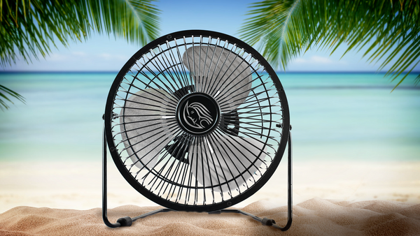 Fan & Ocean Sounds White Noise MP3
