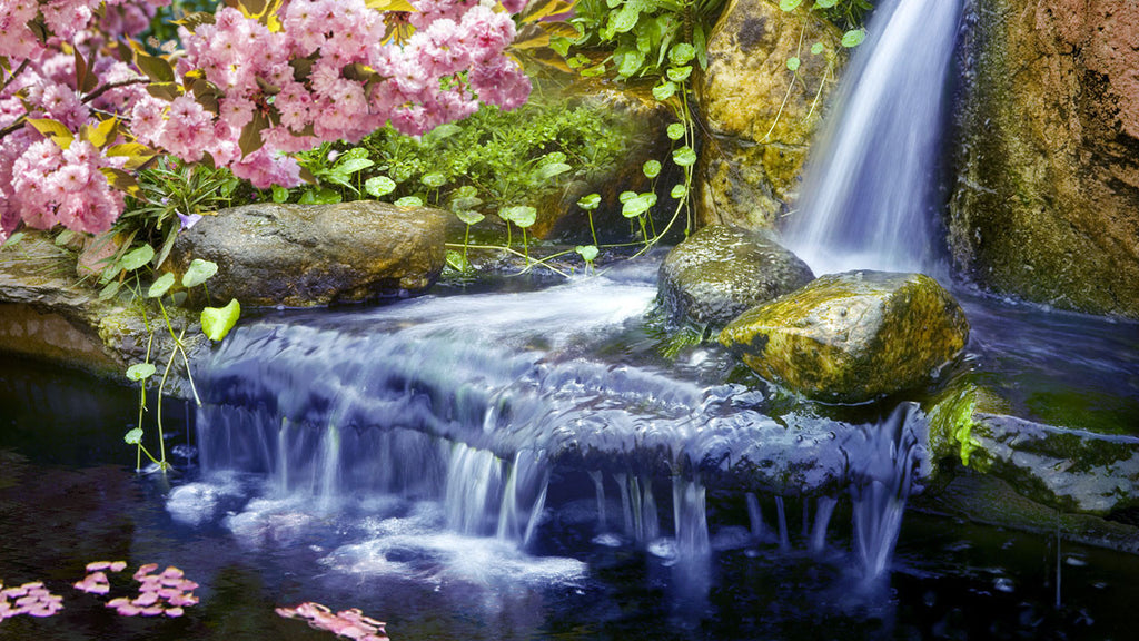Use this relaxing white noise of water sounds in a Japanese garden for extended periods of studying, meditating or sleeping.