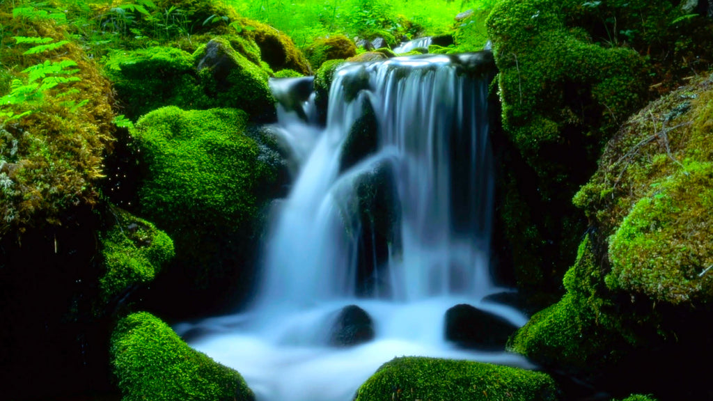 Mountain Stream Water Sounds Mp3 Relaxing White Noise