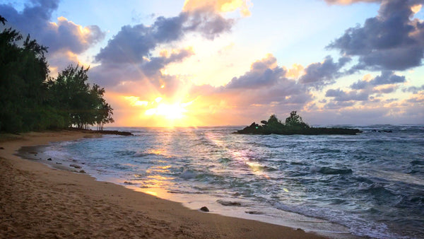 The relaxing white noise sounds of crashing waves on a Hawaii beach will help you relax, study, sleep or soothe a crying baby.