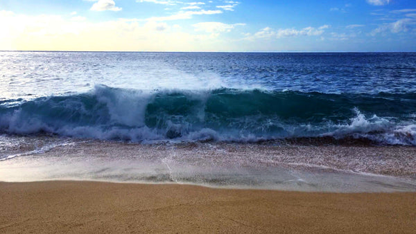 Relaxing ocean waves white noise will help you relax and sleep.