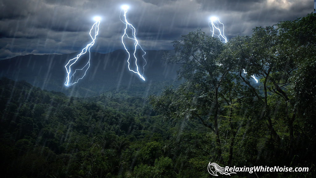 Rain Forest Thunder & Rain Sleep Sounds MP3