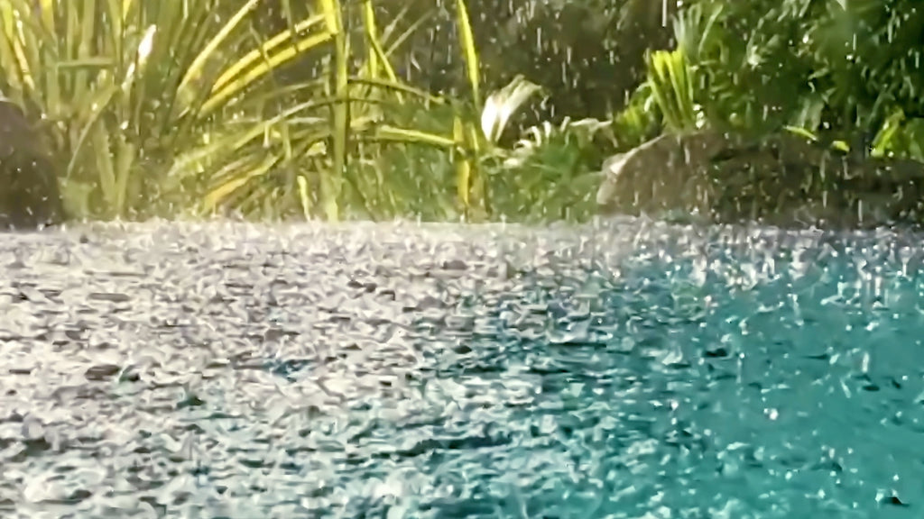 Thunder Sounds with Rain on Pond MP3