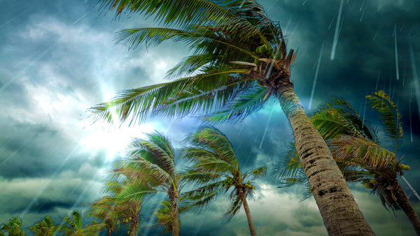 Tropical Island Beach Ambience Sound: Tropical Storm Rain Sounds MP3