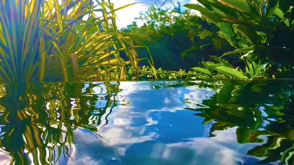 Water Sounds for Relaxation in Paradise MP3