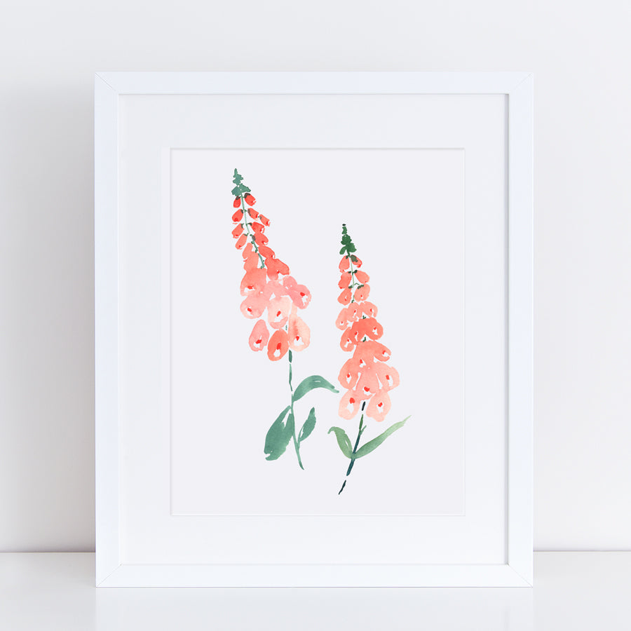 Foxgloves Print