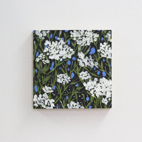 Queen Anne's Lace - 8x8